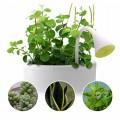 get-smart-ismanusis-augalo-priziuretojas-rodo-kada-reikia-laistyti-jusu-augala-nr4