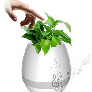 Get-Smart-ismanusis-augalas-kuris-dainuoja-bluetooth-kolonele-nr1