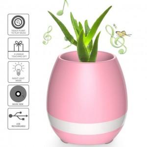 Get-Smart-ismanusis-augalas-kuris-dainuoja-bluetooth-kolonele-nr2